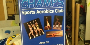 Noosaville Champs Sports Pull-up Banner